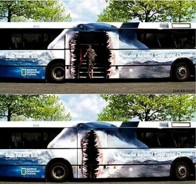 bus_ad_shark
